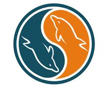MySQL Criar um Database